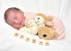Hannah 09042021