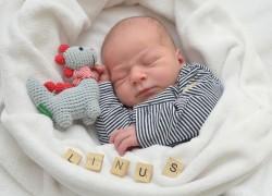 Linus 09062021