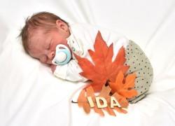 Ida 05102021